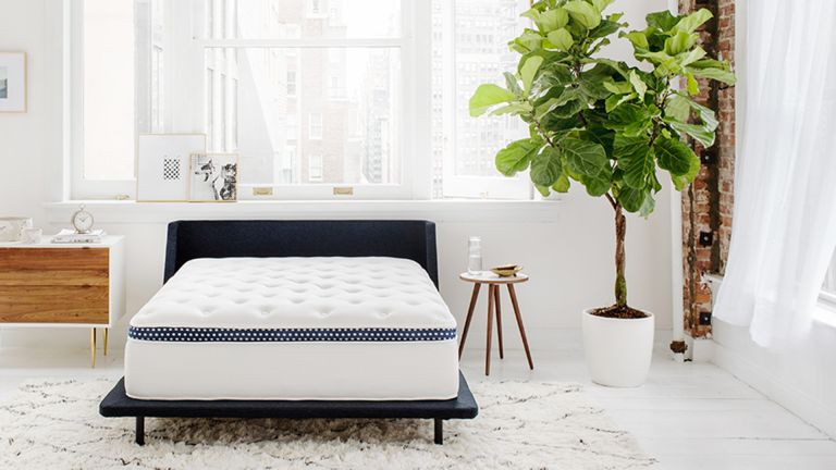 The WinkBed (Luxury Firm) mattress review