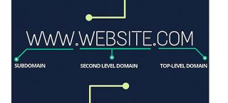 Behind the Internet: The History of Domain Names