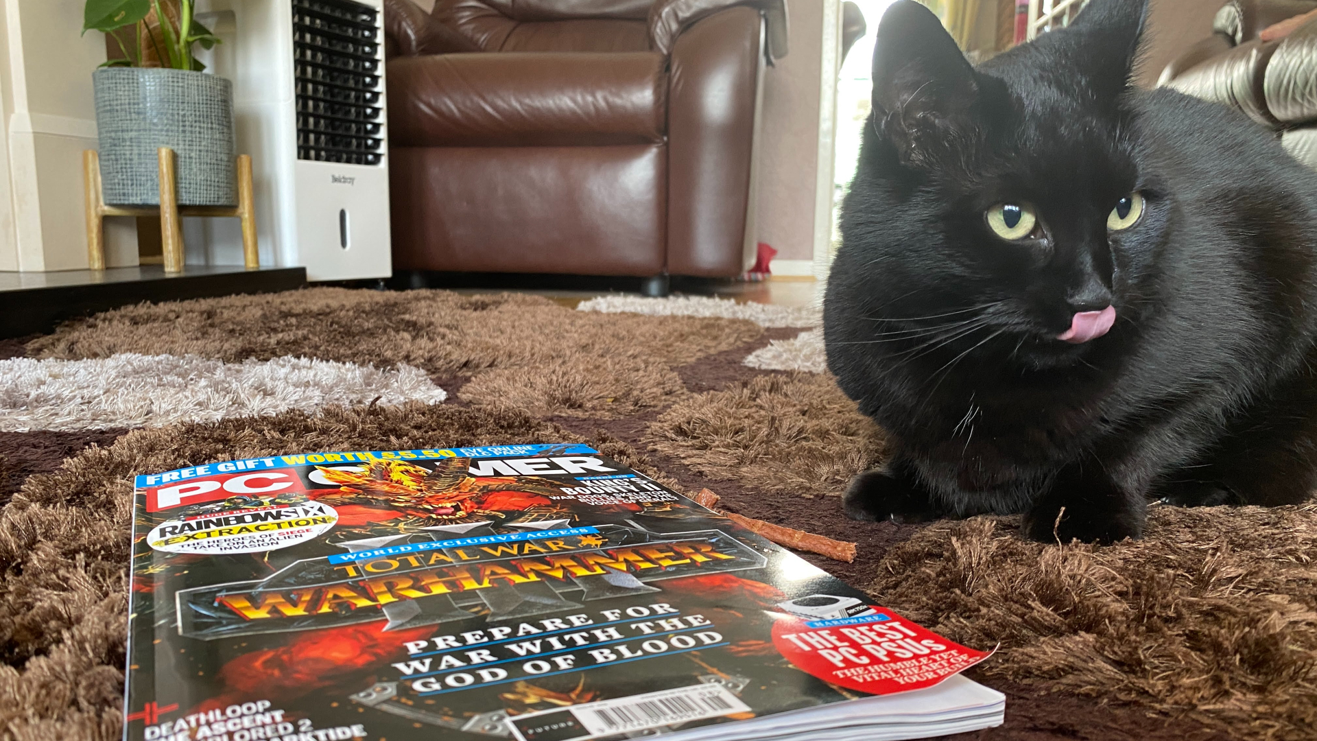 luna the black cat in front of a PC Gamer magazine