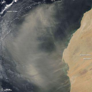 western Sahara, Saharan Desert Dust