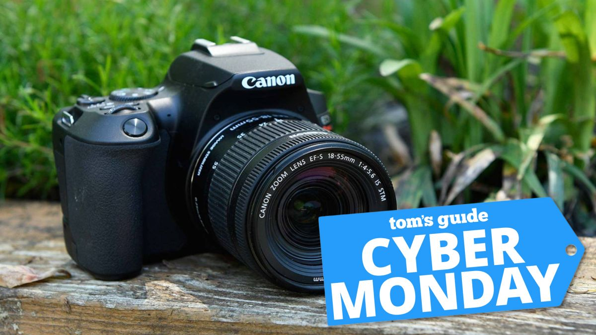 Best Cyber Monday camera deals 2020: Save on Canon, Nikon, Sony, GoPro and more