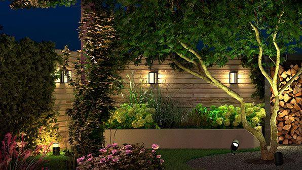 Amazon philips hue garden lighting in garden with lots of greenery