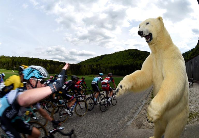 A stuffed bear watches stage three of the 2015 Tour de Romandie
