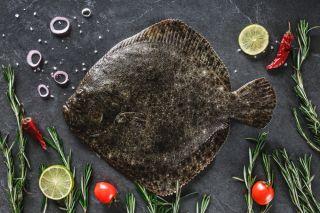 A Flounder fish