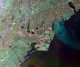 danube-river-delta-110208-02