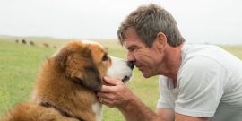 How Dennis Quaid Got The Dogs' Attention On The Set of A Dog's Journey