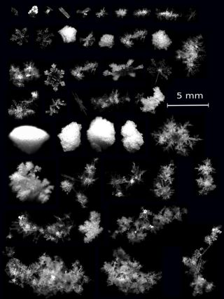 3D Photos of snowflakes falling in mid-air.