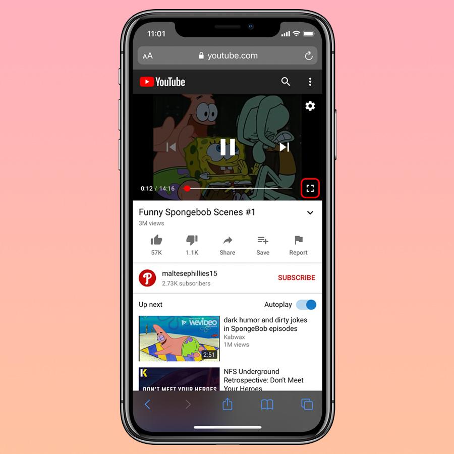 iOS 14 PIP YouTube