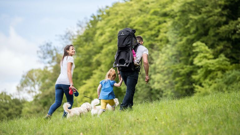 best hiking baby carrier: LittleLife Voyager S5