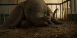 What Dumbo's Cast Thinks About Animals Being Used In Entertainment