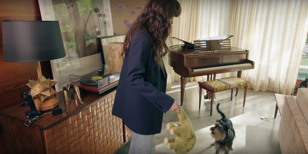 Dakota Johnson and dog Zeppelin