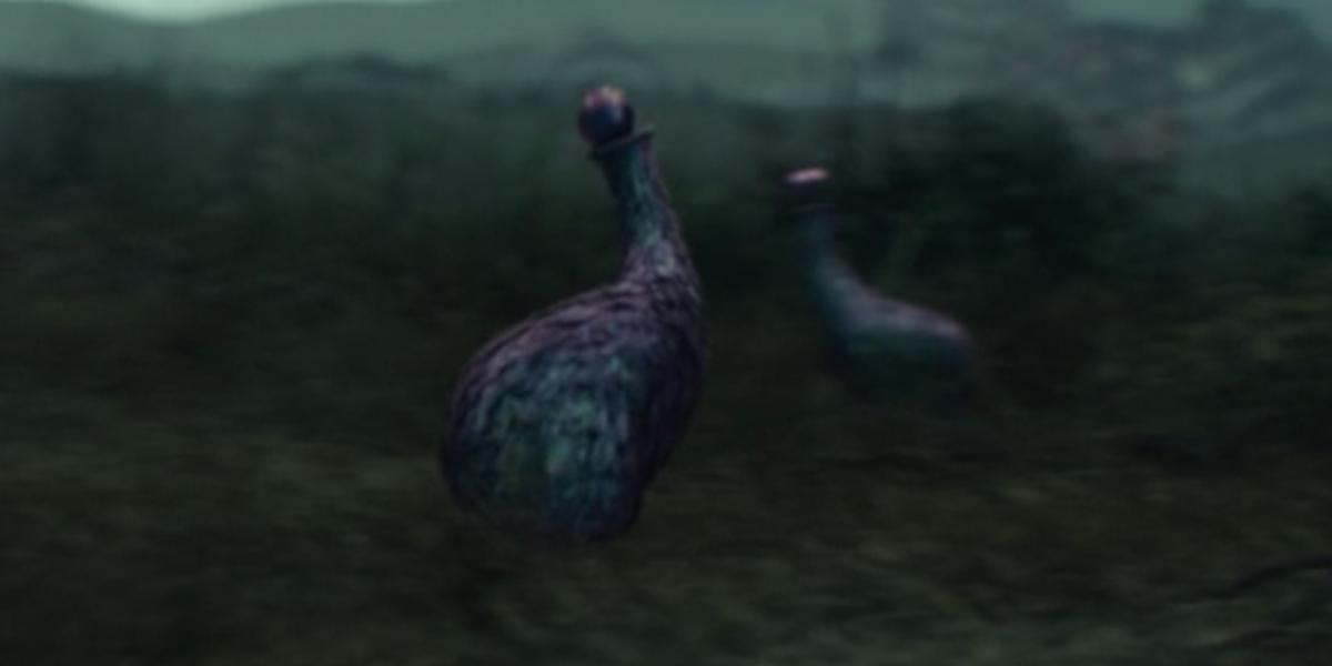 loki bird creatures