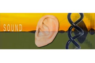 deafness, causes, proteins
