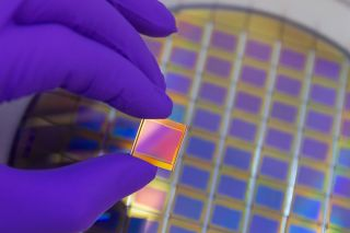 Hand in purple color glove holding microchip photo sensor matrix. On the background is diced silicon wafer with microchips. Focus on chip.