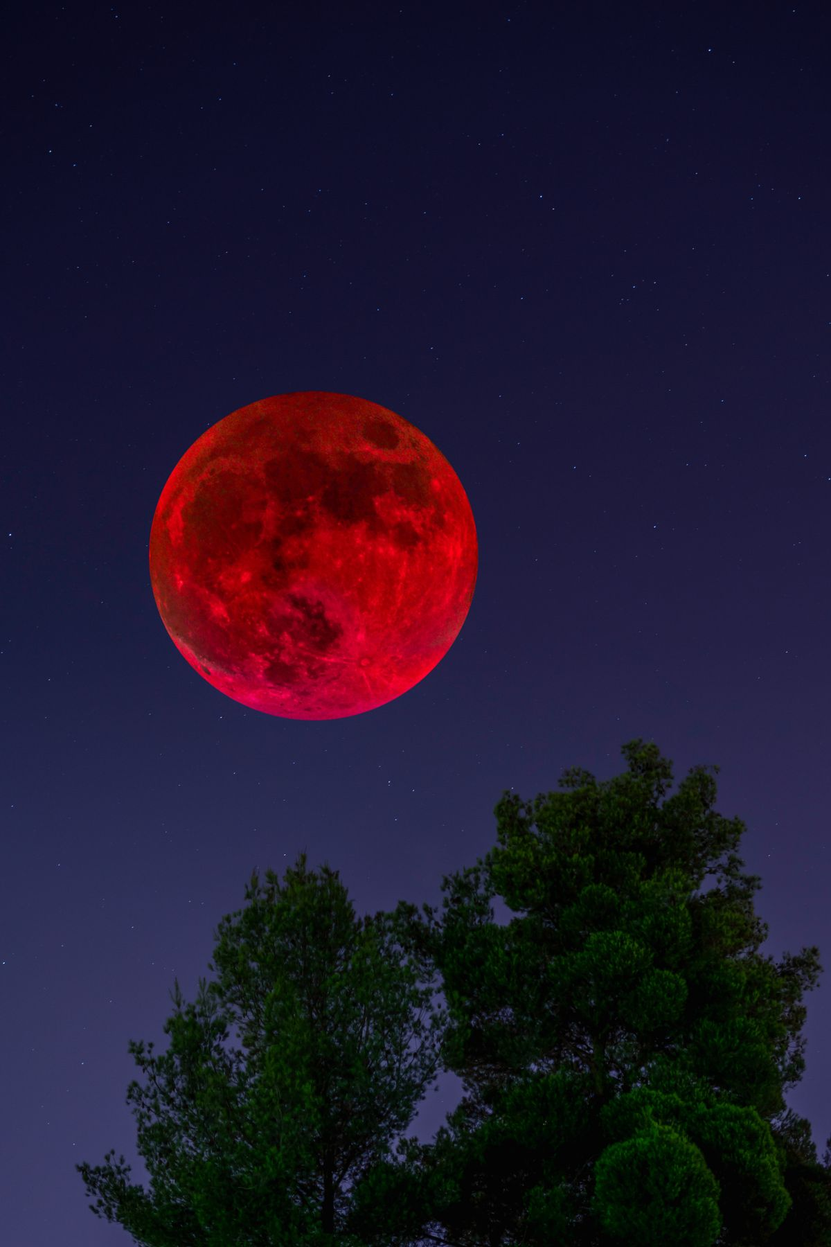 Blood Moon 2019: How to photograph the total lunar eclipse on 20-21