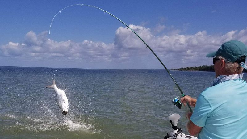 Best fishing rod
