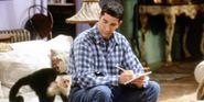 Friends' Marcel Monkey Set To Return To TV