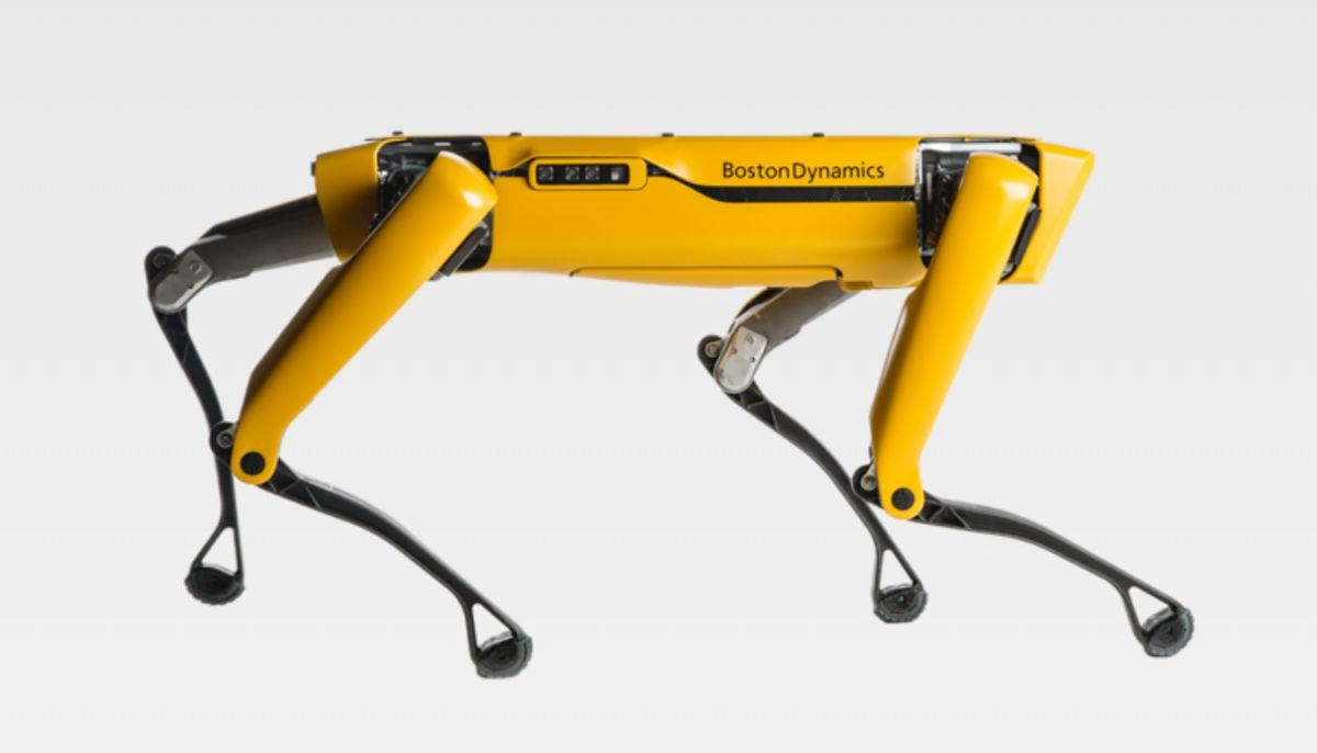 Boston Dynamics' quadruped robots are now roaming the world free. Good luck, everyone.