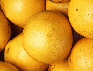 Is Grapefruit Juice Toxic?   Live Science