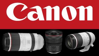 Shortages are behind Canon's RF lens delays
