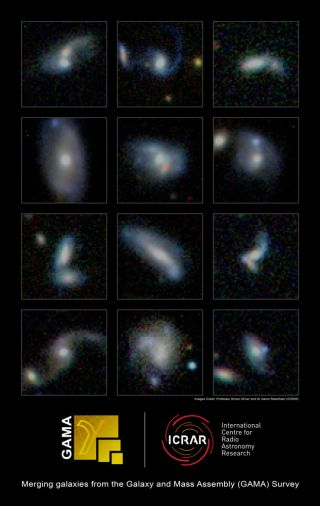 Huge Galaxies Eat Smaller Neighbors