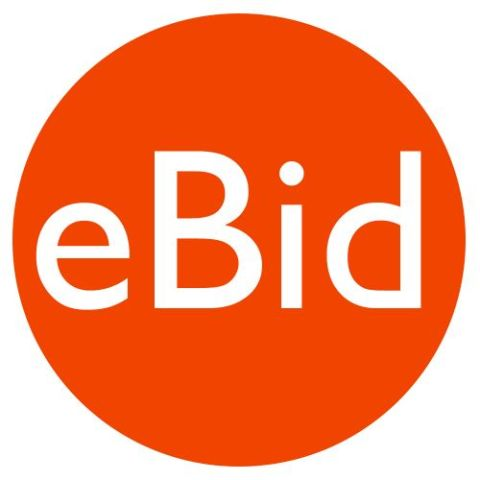 eBid Review - Pros, Cons and Verdict | Top Ten Reviews