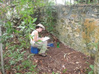 Archaeologist Rachel Cajigas records the top layers of an excavation unit in the British Virign Islands where a plantation house, and buried artifacts, have been discovered.