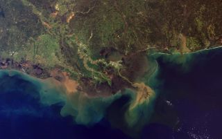 Mississippi River sediment plume