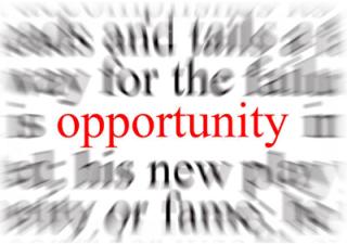 Pillars of Digital Leadership Series: Opportunity