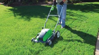 Save $45 on this Greenworks lawn mower and get prepped for summer