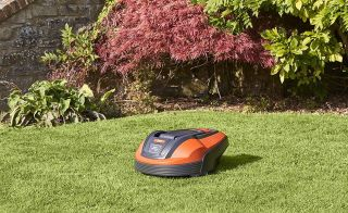 Early Amazon Prime Day 2020 deals on lawnmowers
