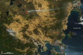 Tasmanian wildfires. Image taken by NASA's Terra satellite on Jan. 7, 2013.