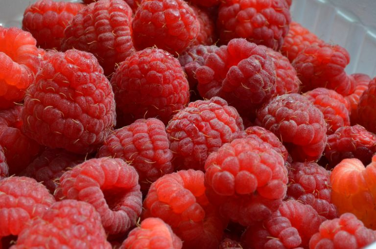 Monty Don tips on how to plant raspberries