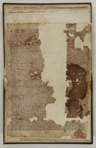 Sandwich Magna Carta