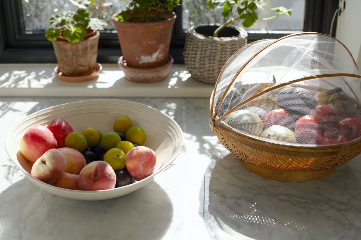 Wave goodbye to fruit flies with these tips