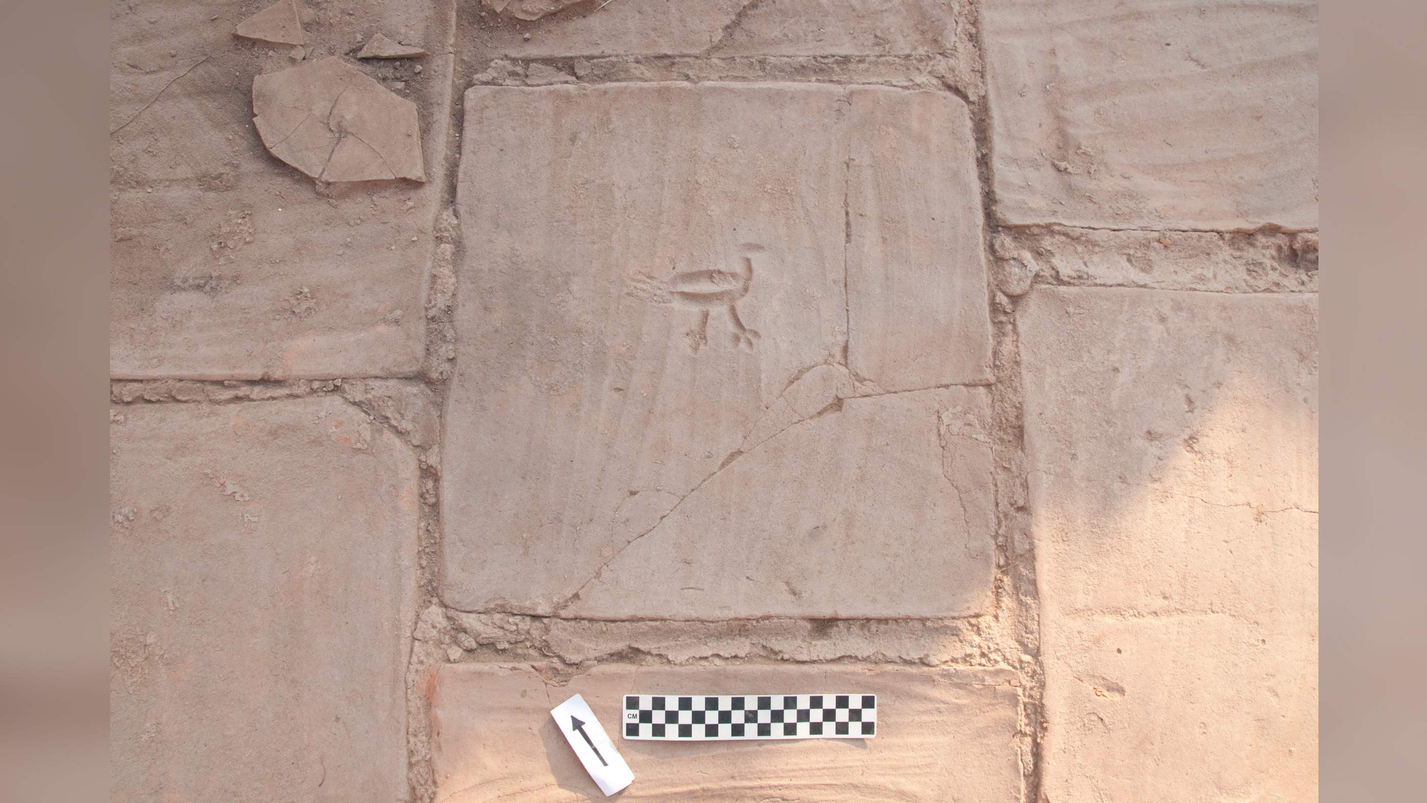 A bird/chicken was carved into a terracotta floor tile prior to firing.