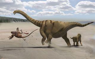 Brontomerus dinosaur kicking