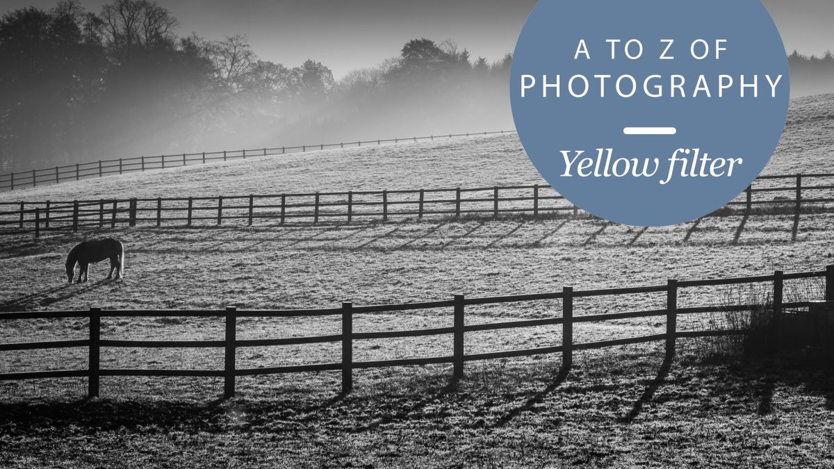 The a to z of photography yellow filter techradar