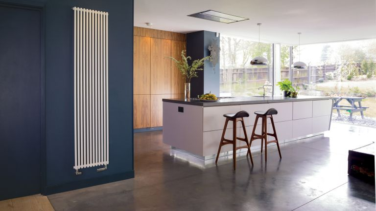 Bisque Trubi radiator in contemporary kitchen