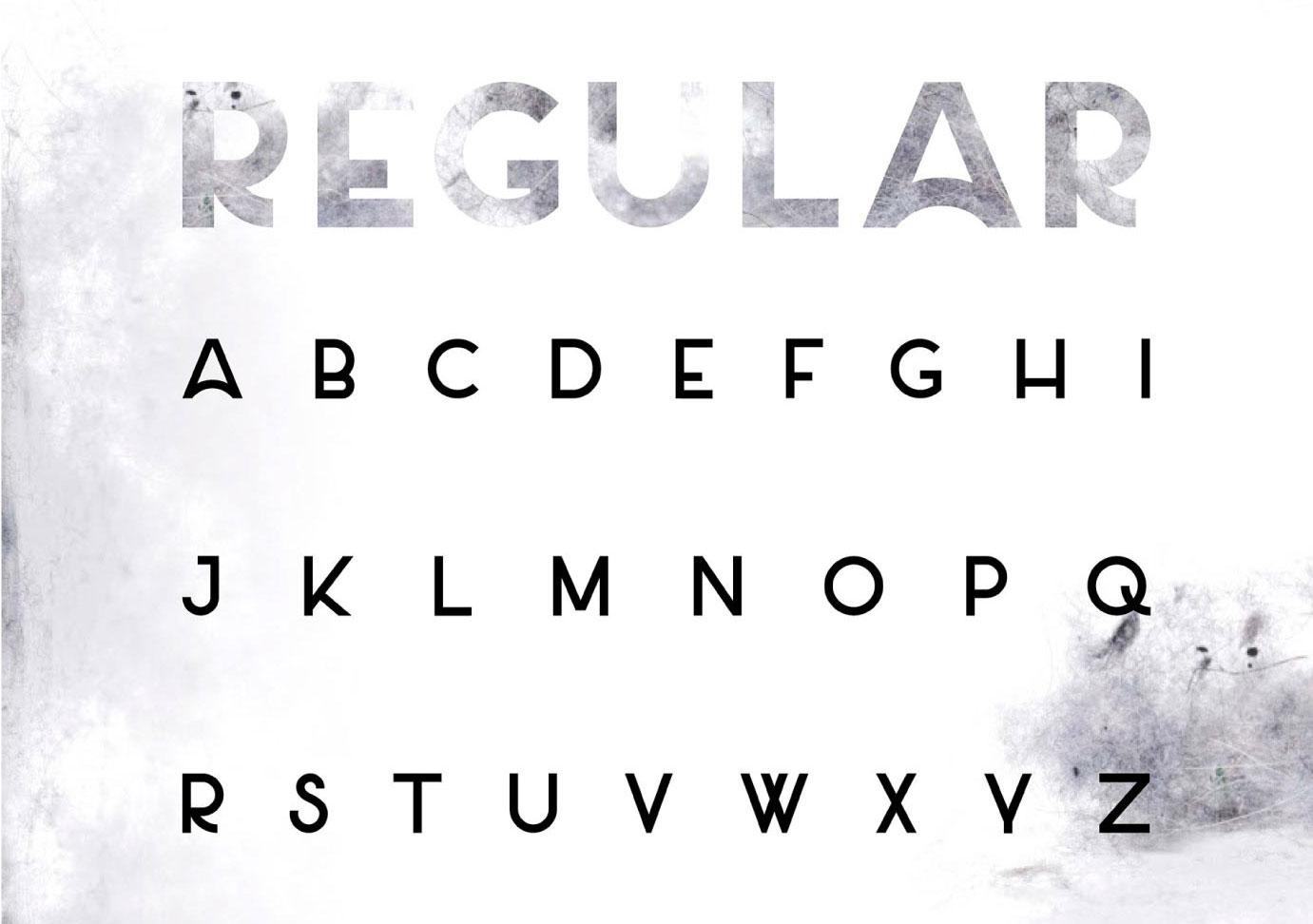 free fonts: salt