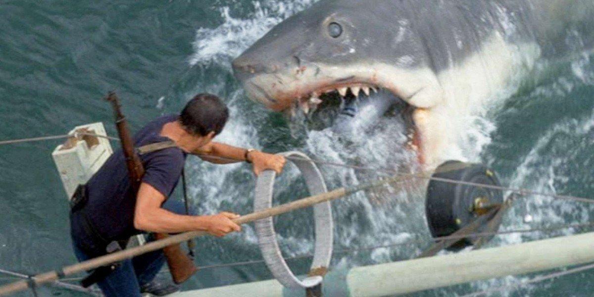 Jaws shark attacks the boat