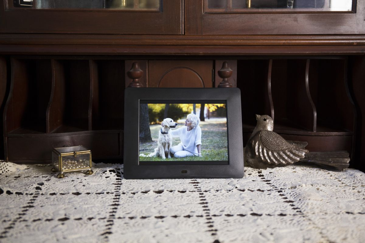 Best Digital Photo Frames of 2019