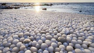 Ice eggs along shoreline