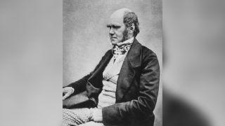 Charles Darwin in 1857