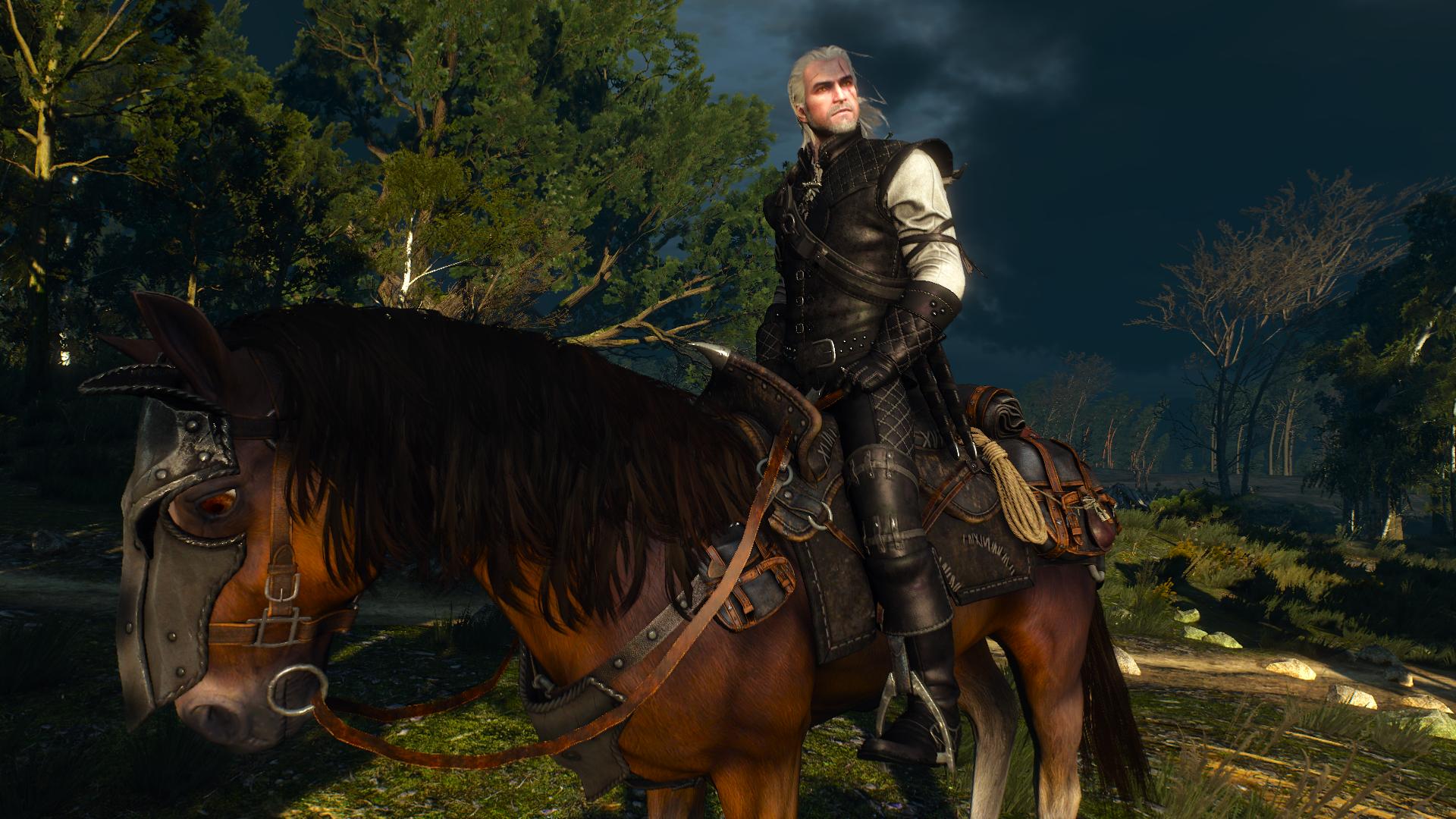 Best Witcher 3 Mods - Sezon Burz Witcher Gear