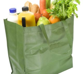 norovirus outbreak, norovirus transmission, stomach bug, reusable grocery bag, foodborne illness, public health