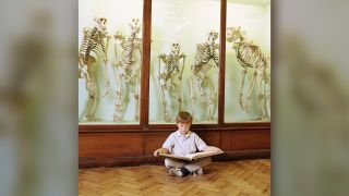 A boy sits in front of museum skeletons