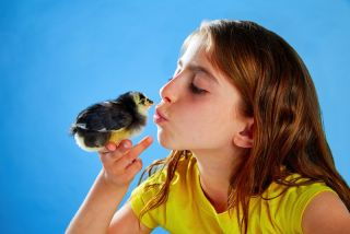 a girl kissing a baby chick