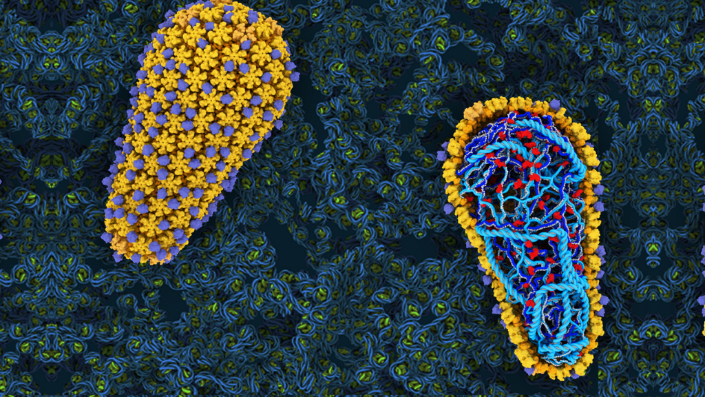 Scientists zoom in on HIV inside a test tube, find critical steps in infection