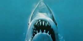 Jaws' Author Finally Explains Whether The Shark Or The Mayor Is The Story's Real Villain